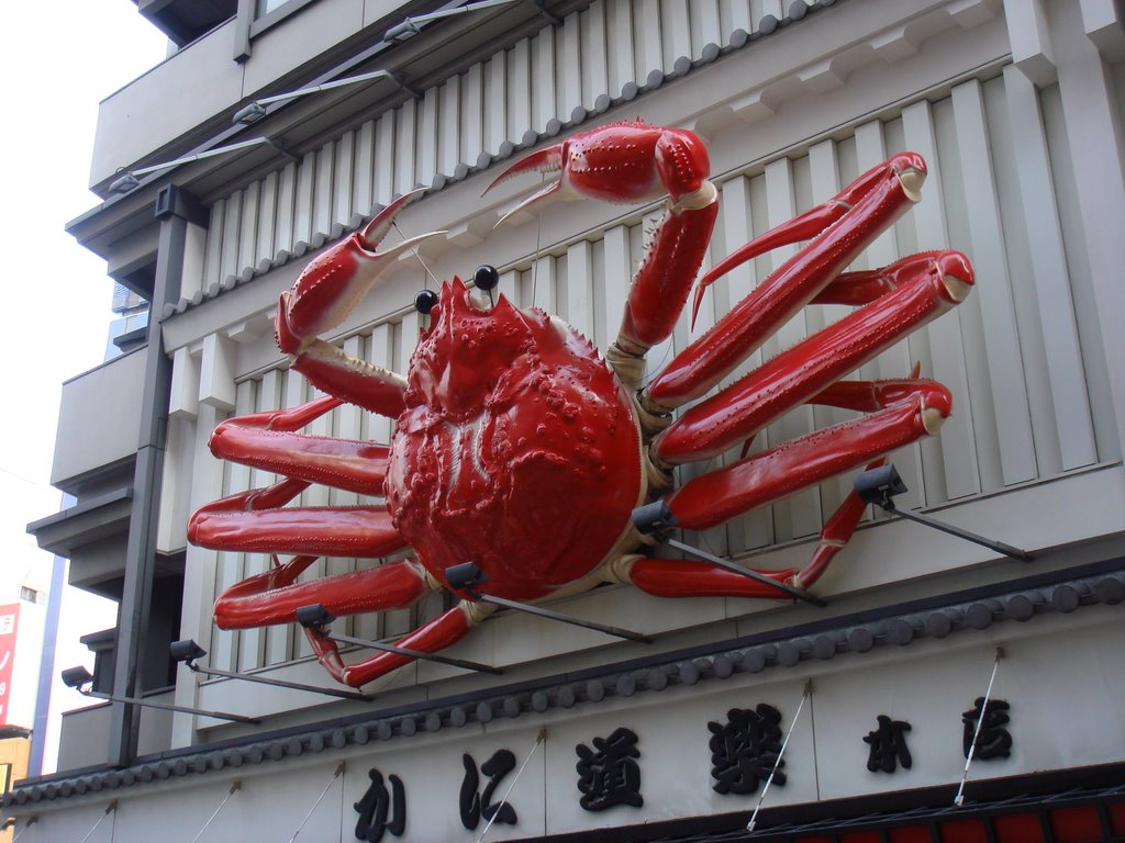 http://www.tamegoeswild.com/thedailymumble/uploaded_images/famous-crab-715926.JPG